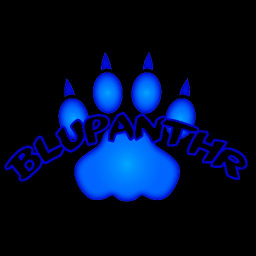 Blupanthr Professional Services